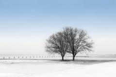 Winter durch den See Stockfotos