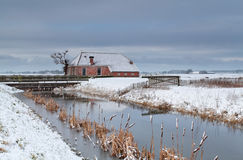 Winter in Dutch farmland Royalty Free Stock Photos