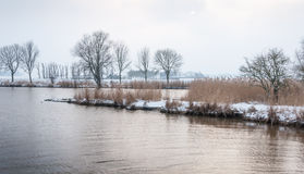 Winter in a Dutch river area Royalty Free Stock Photo