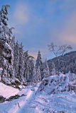 Winter. Eastern Europe, Bulgaria, Rodope mountains, beautiful winter landscape Royalty Free Stock Photos