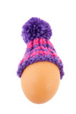 Winter egg Royalty Free Stock Photo