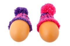 Winter egg Royalty Free Stock Image