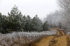 Winter eingefroren, eisige ländliche Landschaft Stockfotos