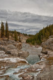 Winter at Elbow Falls Royalty Free Stock Images