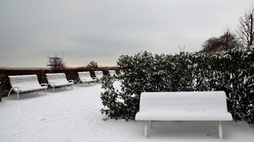 Winter And empty Bench. Bench and garden on Baltic seaside Germany in winter  Covered with Snow and Ice Royalty Free Stock Photo