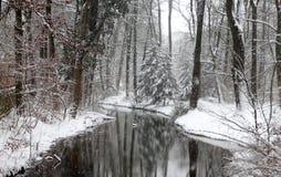 Winter in English Garden, Munich Royalty Free Stock Image