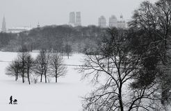 Winter in English Garden, Munich Royalty Free Stock Photo