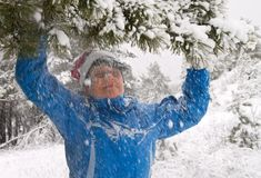 Winter entertainments Stock Photography