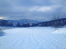 winter environment Royalty Free Stock Photo