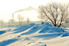 Winter etude. S are photographed at different times in Altai Stock Photo