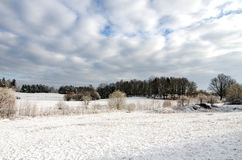 Winter European Farmland Royalty Free Stock Photo