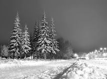 Winter evening. Russian winter in Christmas holidays. Black and white stock photos