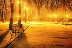 Winter evening in a central park. Benches covered in snow in a big park with trees Stock Photo