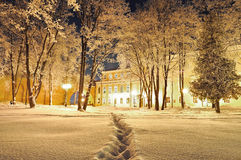 The winter evening in the city park - winter landscape Royalty Free Stock Images