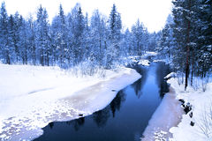 Winter evening in deep forest with river Royalty Free Stock Photography