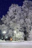 The winter evening Stock Photos