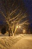 The winter evening Royalty Free Stock Photos