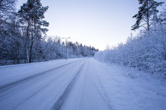 Winter evening forest with road covered with snow Stock Photo