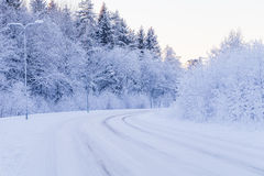 Winter evening forest with road covered with snow Royalty Free Stock Image