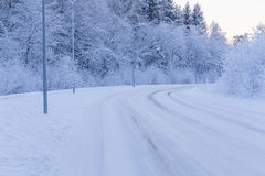 Winter evening forest with road covered with snow Stock Photos