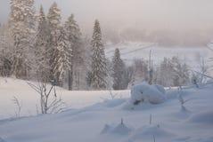 Winter evening frosty landscape. With the light mist Stock Photo