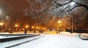 Winter evening in Kharkiv park -  Ukraine. Winter evening in Kharkiv park - Ukraine Royalty Free Stock Photography