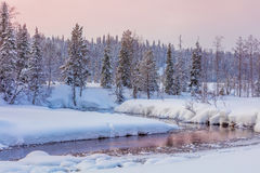 Winter evening landscape with forest and rive Stock Photos