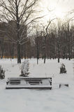 Winter evening landscape in the park. Sunset. An empty bench covered with snow. Royalty Free Stock Images
