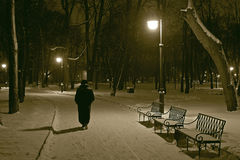 Winter evening. A lone pedestrian walks in the park on a winter evening Royalty Free Stock Photo