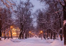 Winter evening. Moscow. Russia. Stock Image