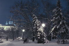 Winter evening in the municipal garden. In Kharkov royalty free stock photography