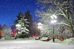 The winter evening in the park. The winter evening in the city park with falling snow - beautiful winter landscape Royalty Free Stock Images