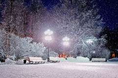The winter evening in the park. The winter evening landscape with falling snow - soft focus processing Stock Photography