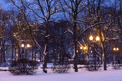 Free Winter Evening Park Landscape. Snow Covered Trees, Christmas Decoration And Street Lights. Stock Images - 154974014