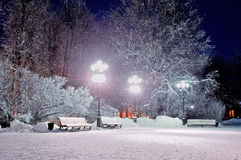 The winter evening in the park Royalty Free Stock Photography