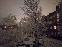 Winter. Evening Photo Royalty Free Stock Photography