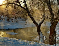 Winter evening. At the pond shore Stock Images