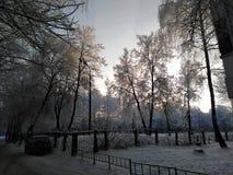 Winter evening royalty free stock photos
