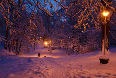 Winter evening scene. Illuminated by lamps on poles Stock Image