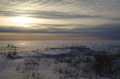 Winter evening. Royalty Free Stock Image
