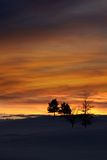 Winter evening sky Royalty Free Stock Images