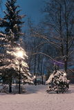 Winter evening in the snow-covered garden in downtown of Kharkov Royalty Free Stock Images