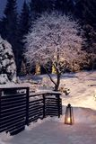Winter evening in snowy garden. Winter evening in snowy home garden royalty free stock photo