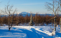 Winter evening in the Ural mountains. Royalty Free Stock Image