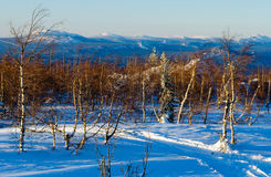 Winter evening in the Ural mountains Royalty Free Stock Photos