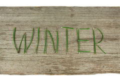 Winter Evergreen Sprigs on Rustic Wooden Board royalty free stock photo