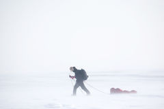Winter Expedition. A single person on a winter expedition in a snow storm Stock Photo