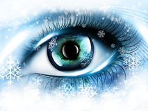 Winter eye Royalty Free Stock Images