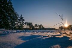 Winter fängt Sonnenuntergang mit Schnee auf Stockbild