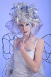 Winter Fairy Royalty Free Stock Images